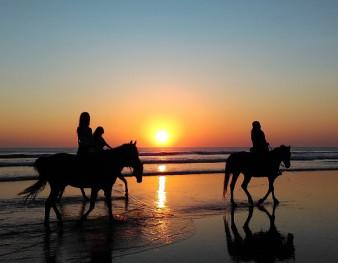 Randonnée à cheval en bord de mer au soleil couchant